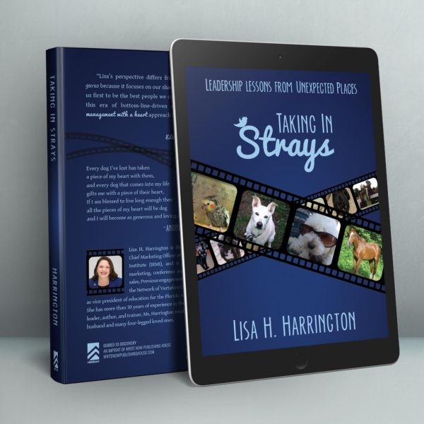 Taking In Strays eBook Mockup